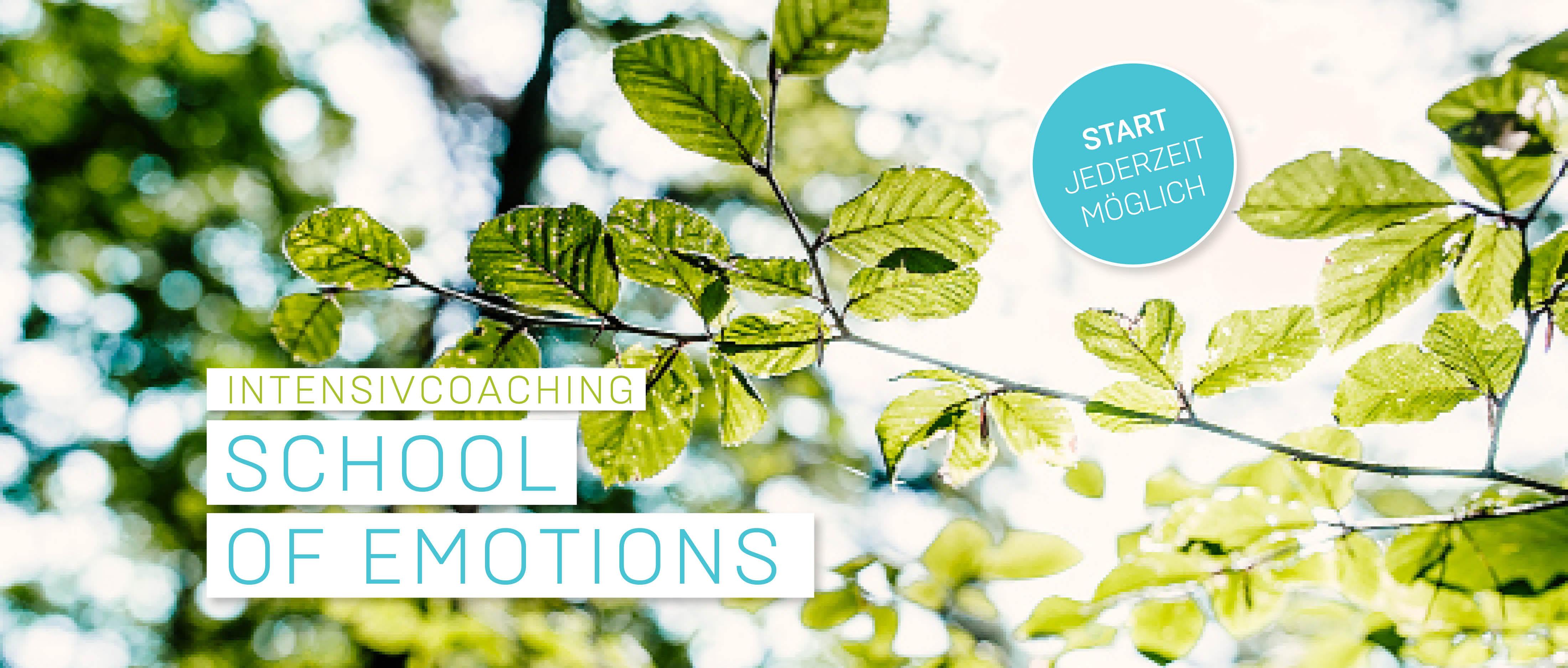 School of Emotions